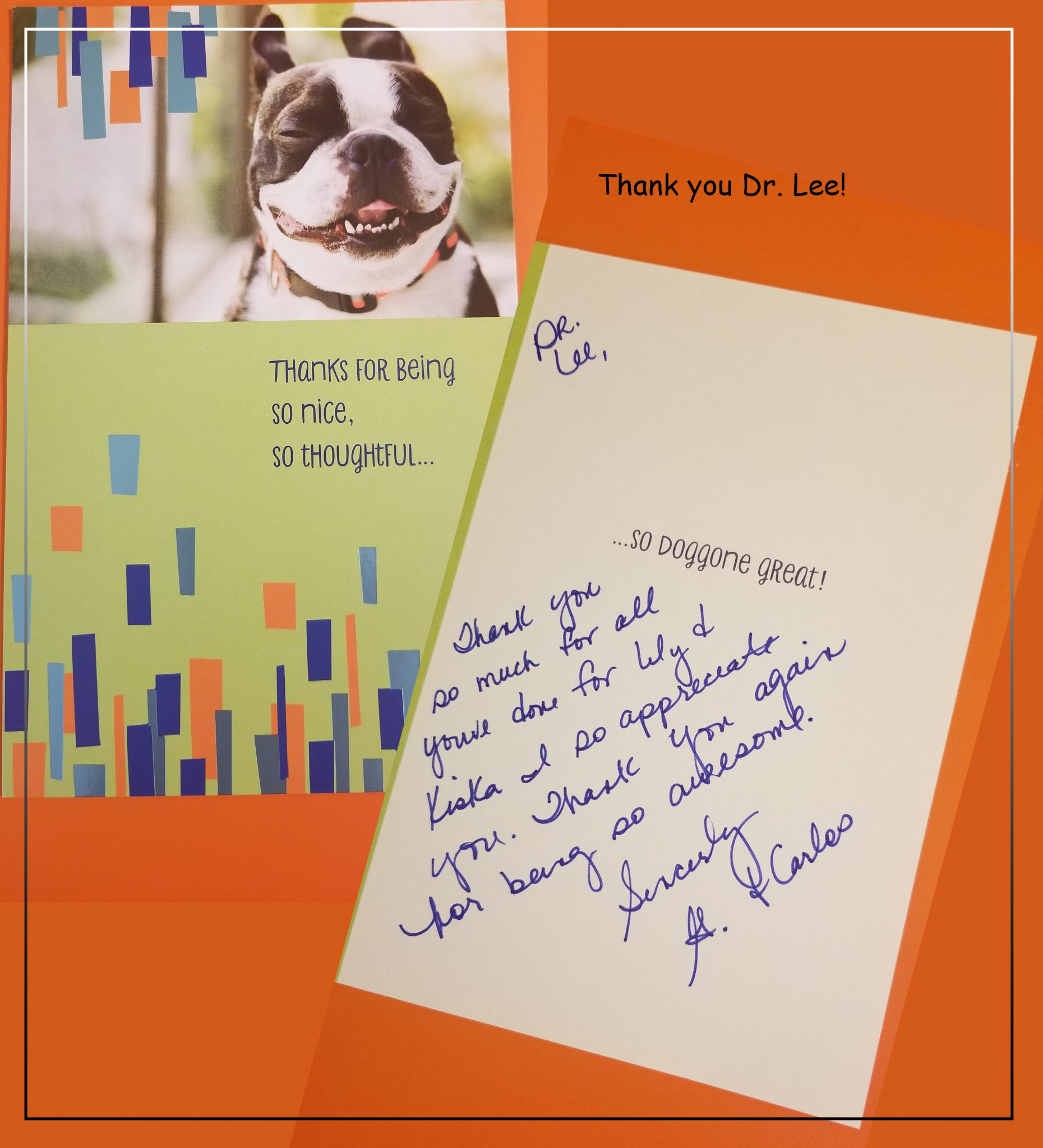 am-pm-ideal-pet-care-thank-you-dr-lee